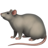 Rat on Apple iOS 12.1