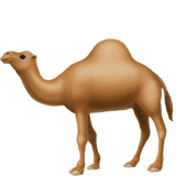Camel on Apple iOS 12.2