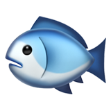 picture of a blue fish