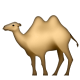 Two-Hump Camel on Apple iOS 6.0