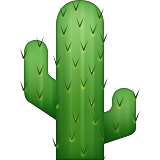 Cactus on Apple iOS 6.0