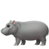 Hippopotamus on Apple iOS 13.1