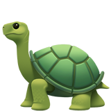 Turtle on Apple iOS 13.1