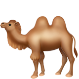 Two-Hump Camel on Apple iOS 13.2
