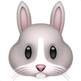 Rabbit Face on Apple iOS 13.2