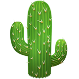 Cactus on Apple iOS 13.3