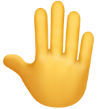 Raised Back of Hand on Apple iOS 13.3