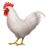 Rooster on Apple iOS 13.3