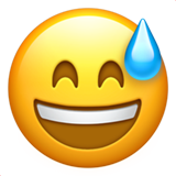 Grinning Face with Sweat on Apple iOS 13.3