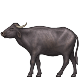 Water Buffalo on Apple iOS 9.0