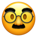 Disguised Face on Apple iOS 14.2