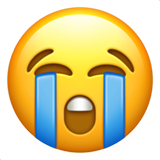 Loudly Crying Face on Apple iOS 14.2
