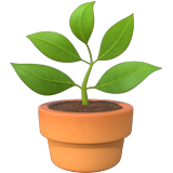Potted Plant on Apple iOS 14.2