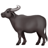 Water Buffalo on Apple iOS 14.2