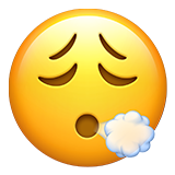 Face Exhaling on Apple iOS 14.5
