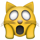 Weary Cat Face on Apple iOS 9.3