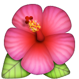 Hibiscus on Apple iOS 8.3