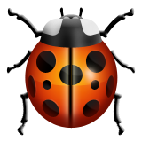 Lady Beetle on Apple iOS 8.3