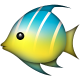 Tropical Fish on Apple iOS 8.3
