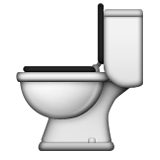 Toilet on Apple iOS 10.0