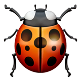 Lady Beetle on Apple iOS 10.2