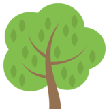 Deciduous Tree on JoyPixels 2.2.5