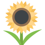 Sunflower on JoyPixels 2.2.5
