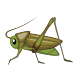 Cricket on emojidex 1.0.33