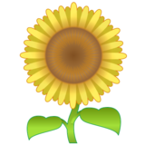 Sunflower on emojidex 1.0.33