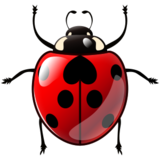 Lady Beetle on emojidex 1.0.14