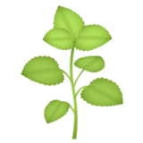 Herb on emojidex 1.0.24