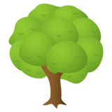 Deciduous Tree on JoyPixels 4.5