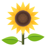 Sunflower on JoyPixels 4.5