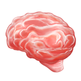 Brain on Emojipedia 6.0