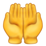 Palms Up Together on Emojipedia 11.0