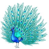 Peacock on Emojipedia 11.0