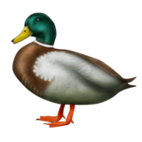 Duck on Emojipedia 2.0