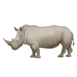 Rhinoceros on Emojipedia 5.0