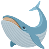 Whale on Facebook 2.1