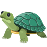 Turtle on Facebook 2.2