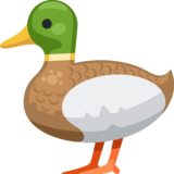 Duck on Facebook 2.2.1
