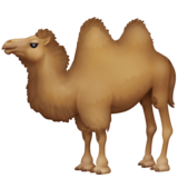 Two-Hump Camel on Facebook 3.0