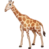Giraffe on Facebook 3.0