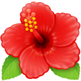 Hibiscus on Facebook 3.0