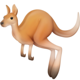Kangaroo on Facebook 3.0