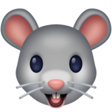 Mouse Face on Facebook 3.0