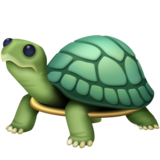 Turtle on Facebook 3.0
