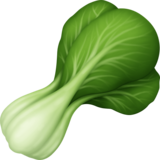 Leafy Green on Facebook 3.1