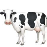 Cow on Facebook 4.0