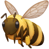 Honeybee on Facebook 4.0